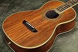 Washburn / WP55NS Natural ワッシュバーン アコースティックギター