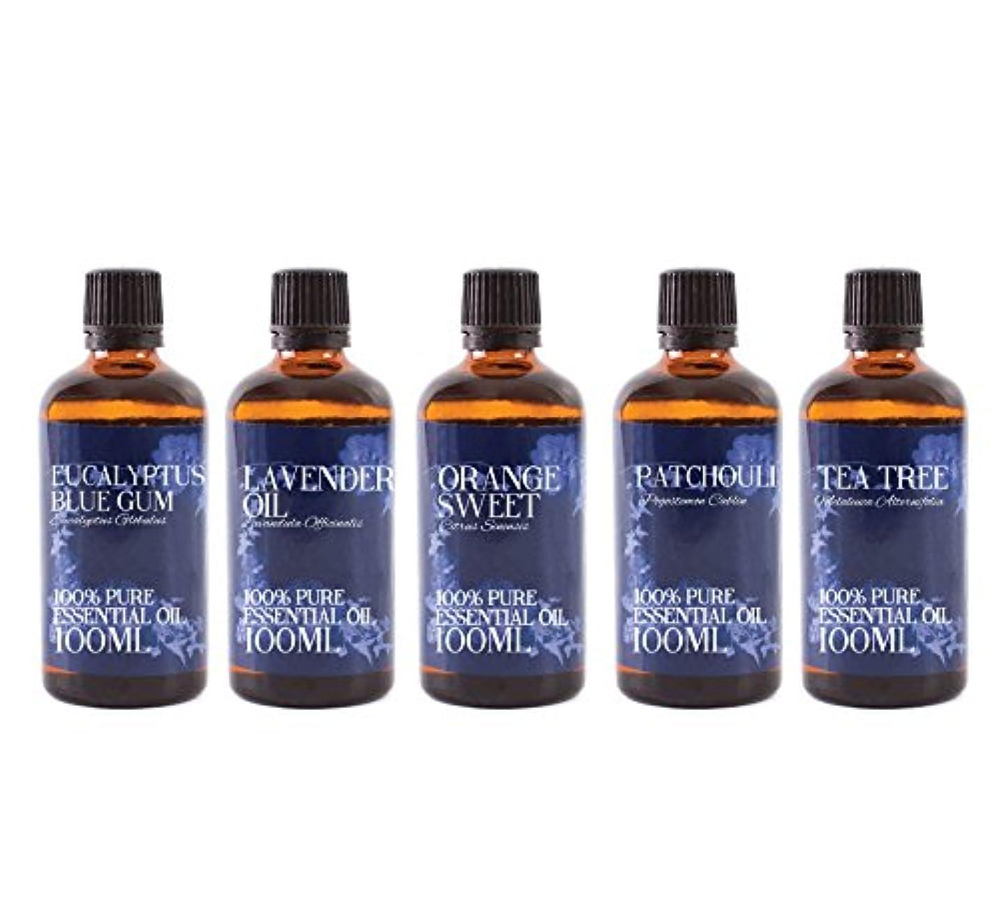 弱点完璧な理容師Mystic Moments | Gift Starter Pack of 5 x 100ml Favourite Essential Oils