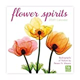 Flower Spirits 2020 Calendar: Radiographs of Nature by Steven N. Meyers