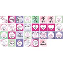 Girl Preemie NICU Milestone Cards and a no touching sign