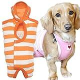 犬猫の服 full of vigor 獣医師と共同開発 パイルボーダーエリザベスウエア ダックス用 女の子 雌用 カラー 18 オレンジ サイズ NM フルオブビガー