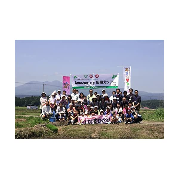【精米】栃木県産 JAしおのや 白米 なすひか...の紹介画像6
