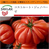 SAFLAX - Garden in the Bag - コストルート・ジェノベーゼ - 10 個の種。- 取扱いが簡単なスタンドアップバッグに栽培用土壌が入っています - Lycopersicon esculentum