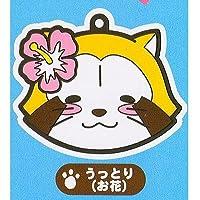 ラスカルRascal Petitゴム[ 5. Enraptured (Flower) ] (シングル)