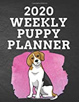 """2020 WEEKLY PUPPY PLANNER: 8.5""""x 11"""" 115 Page BEAGLE Dog Lover Gift with Pink on Black Back Academic Year At A Glance Planner Calendar With To-Do List and Organizer And Vertical Dated Pages Pupper Sitting Up on Splash of Pink (Beagle 2020 Planners)"""
