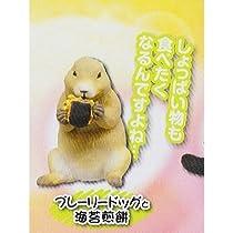 いっぱい食べる動物(きみ)が好き [4.プレーリードッグと海苔煎餅](単品)