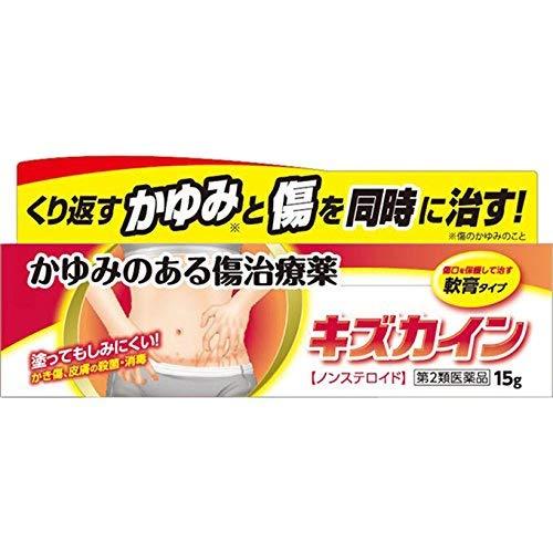 【第2類医薬品】キズカイン 15g ×2