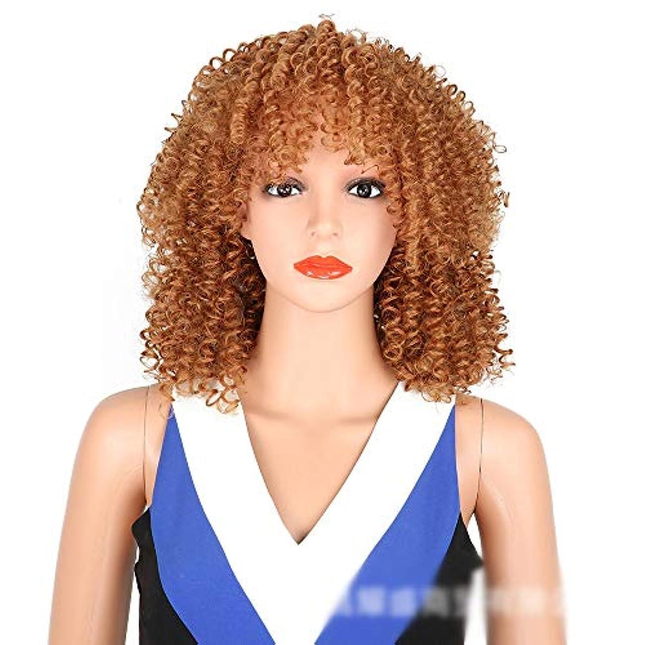 クリックマイクロフォン重くするJULYTER 前髪爆発ヘッドささやかな巻き毛のかつらコスプレパーティートリムでアフリカの黒人女性の短い巻き毛 (色 : ブラウン)