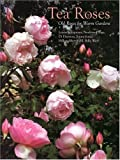 Tea Roses: Old Roses for Warm Gardens 画像
