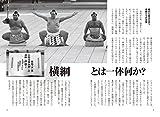 済南より(78)相撲は国技ではないでしょう、傷害事件を起こした横綱日馬富士引退。当然