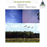 Nature Sounds by Cranes-Natural Sounds