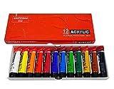 ターレンス アクリル絵具 アムステルダムアクリリックカラー 12色セット AAC-12 20ml(6号)