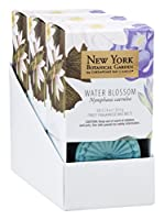 New York Botanical Garden by Chesapeake Bay Candle 6-Piece Wax Melt, Water Blossom (2-Pack) [並行輸入品]
