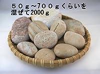 【薬石苑】 姫川薬石 特小?大サイズ 2000g C