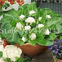 50個レアオーガニックRomanescoタワーブロッコリー盆栽、ローマのカリフラワーフラクタルヘッドBroccoflower野菜DIYホーム&ガーデン:15