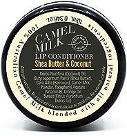 Summer Land Lip Conditioner, 26 g