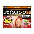 【第2類医薬品】フェイタス5.0温感大判サイズ 14枚入 ※セルフメディケーション税制対象商品