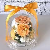 敬老の日 プリザーブドフラワー プレゼント ドーム 黄色 オレンジ お見舞い 誕生日 新築祝い 歓送迎 母の日 チャーム(オレンジ)