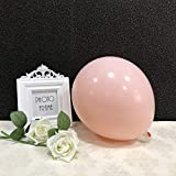 Party Pastel Balloons 100 pcs 10 inch Macaron Candy Colored Latex Balloons for Birthday Wedding Engagement Anniversary Christ