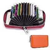 クレジットカードケース Triple 本革製 カードケース カード入れ 財布 RFID スキミング防止 じゃばら 大容量 デザインが多様である (ブラウン)