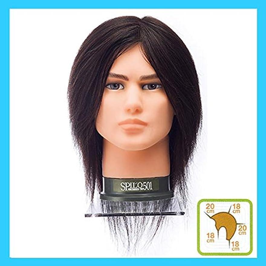 スローガン所有者細心のメンズカットウィッグ スピロ501 人毛100%?黒髪 SPILO501 アイロンパーマ、ブロースの練習に。