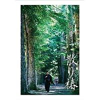 【早期購入特典あり】散り椿 DVD (2枚組)(先着購入者特典:特製クリアファイル(A4)付)