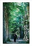散り椿 DVD[DVD]