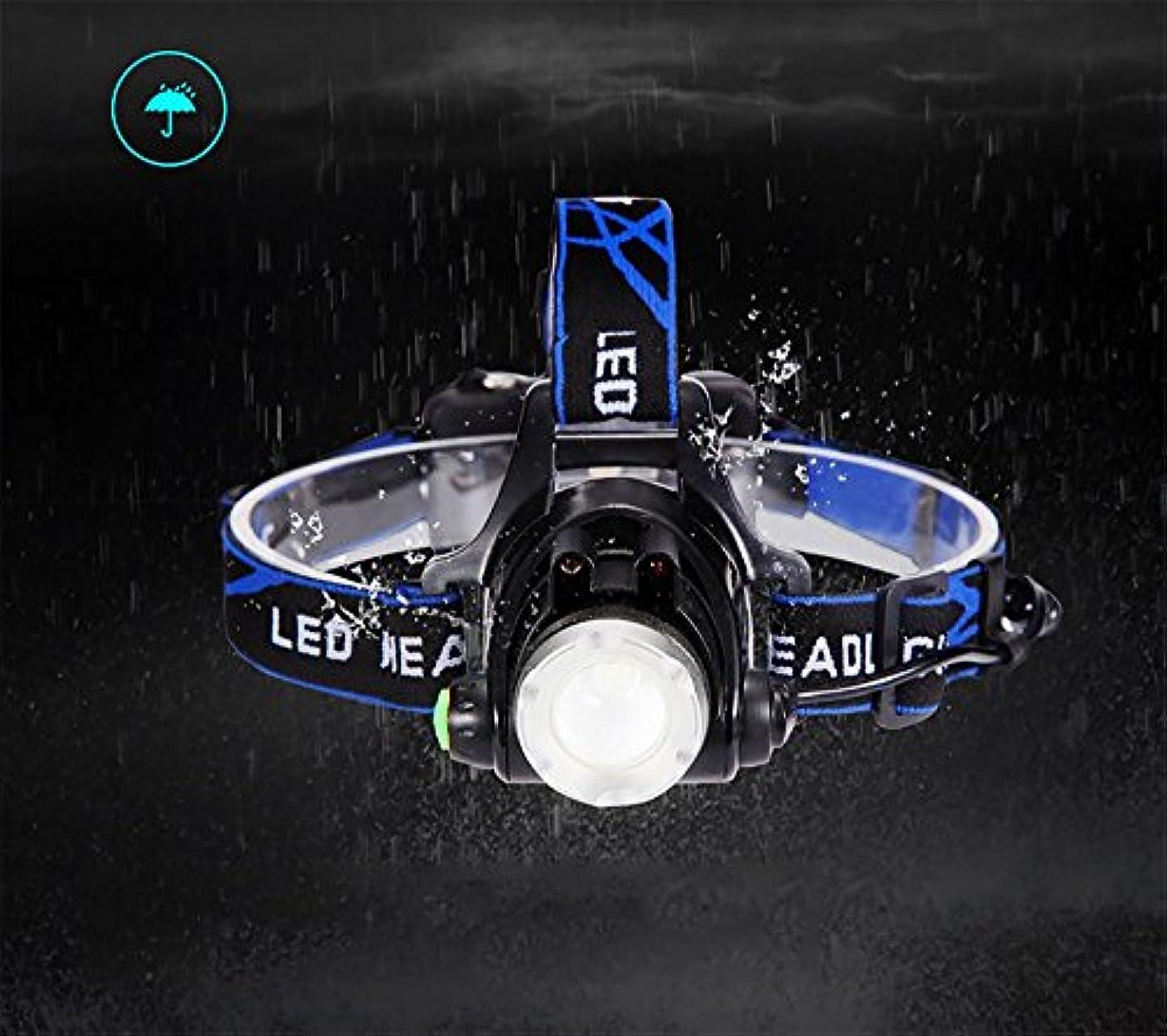 コウモリ推測めんどりAnoak ヘッドライト ボディーセンサー付き 90°調整可能 ズーム機能付き 高輝度 軽量 IPX4防水 USB充電式 夜釣り/山登り/キャンピング/作業/防犯防災などの照明用 LEDヘッドライト (ご注意:北海道と沖縄には届かない)