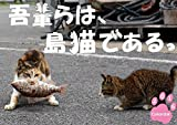 吾輩らは、島猫である。 2016年 カレンダー  壁掛け