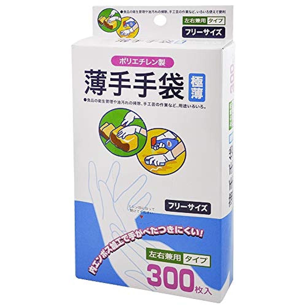 副詞瞑想理想的ニッコー 台ふきん クリア 27cm W-30