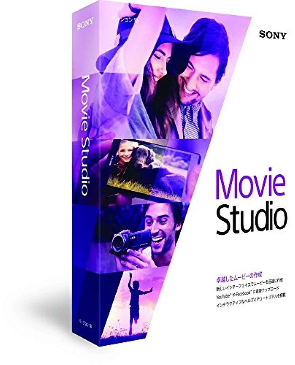 Sony Movie Studio 13【国内正規品】