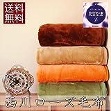 西川 毛布 シングル 日本製 ローズ毛布「sunny days-2モスグリーン」軽量 アクリル ニューマイヤー毛布4colors(モスグリーン)