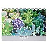 Fat植物San Diego Succulentフォト壁カレンダー