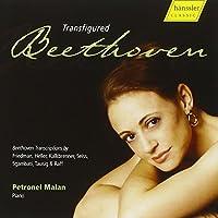 ベートーヴェン変容 (Transfigured Beethoven / Petronel Malan)