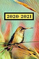Pretty Pastel Pink Yellow Teal & Green Little Hummingbird  Nature Lover's Dated Weekly  2 year Calendar Planner: Cute Small Pocket/Purse Size To-Do Lists,Tasks, Notes, Appointments at-A-Glance Schedule Notebook for a Man or Woman (Years: Jan 2020 - Dec 2021, 25 months Weekly Planner Book)