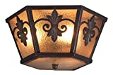 LONSDALE Eurofase 17479-011 Lonsdale 3-Light Flushmount, Antique Sable/Mottled Amber [並行輸入品]