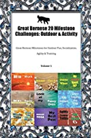Great Bernese 20 Milestone Challenges: Outdoor & Activity Great Bernese Milestones for Outdoor Fun, Socialization, Agility & Training Volume 1