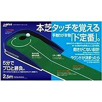 DAIYA GOLF(ダイヤゴルフ) 練習器具 パッティングローテーション TR-430