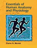Cover of Essentials of Human Anatomy and Physiology Pb