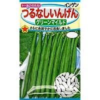 【種子】つるなしいんげん グリーンマイルド 野菜 トーホク
