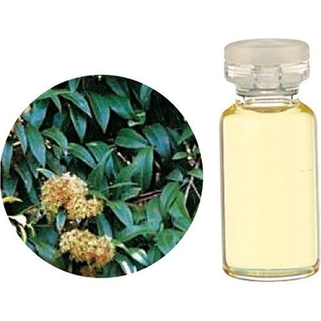 植物学者野なテロ生活の木 レモンマートル 3ml