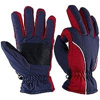 冬手袋、ozero -20ºfコールドプルーフ熱メンズ&レディーススキーグローブ – 強化PU手のひらとTRコットン挿入 – 防水&防風 – denim-frost / berry-red / wine-cream