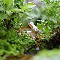 Dovewill ミニチュア ウサギ 20個 マイクロ風景飾り 盆栽 箱庭 風景 ガーデン 装飾品 鉢植え