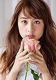 山本美月 女優 Lサイズ写真10枚