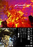 TREEDOM (ツリーダム) ― The road to freedom