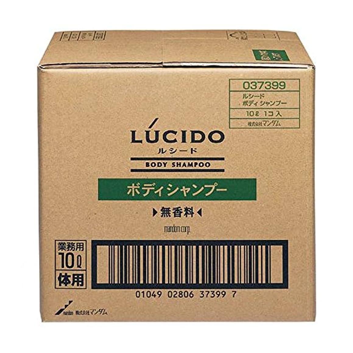 に軸プラスチックマンダム ルシード ボディシャンプー 10L