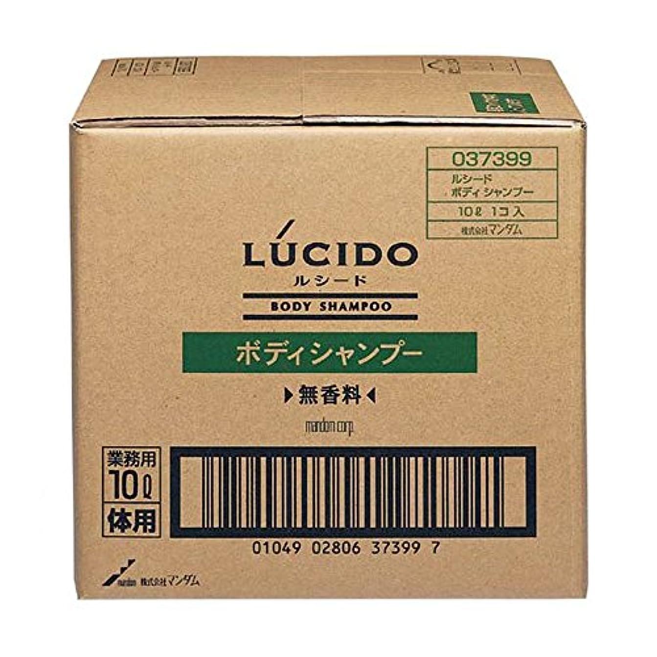 ではごきげんよう野なニコチンマンダム ルシード ボディシャンプー 10L