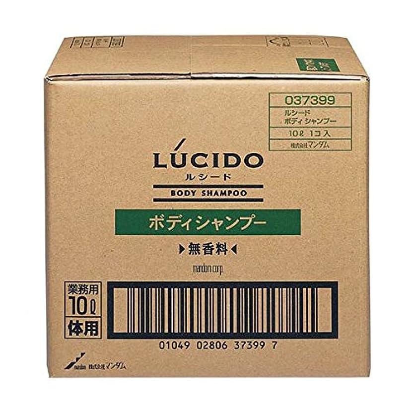 ラケット一般的に結晶マンダム ルシード ボディシャンプー 10L