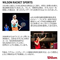 Wilson EZ Tennis Net (18-Feet) [並行輸入品]
