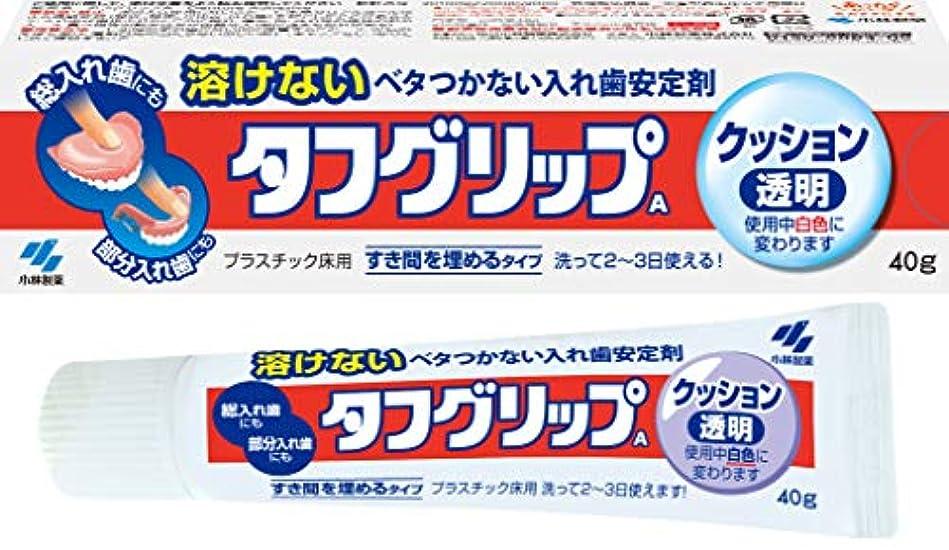 ずんぐりしたますますリクルートタフグリップクッション 透明 入れ歯安定剤(総入れ歯?部分入れ歯) 40g